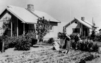 Old black-and-white photo, two small wooden houses with gardens, three women.