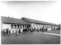 At the Inch School in Edinburgh, each classroom had direct accessed to the shared yard.